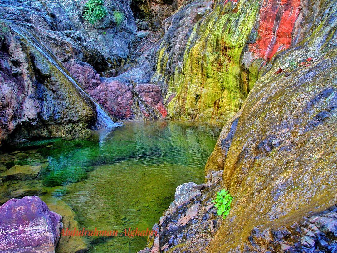 شاهد أجمل صورة لجزيرة سقطرى وتعرف على من التقطها؟