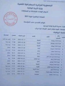 دولة عربية تنافس الحكومة الشرعية على دخول موسوعة جينيس